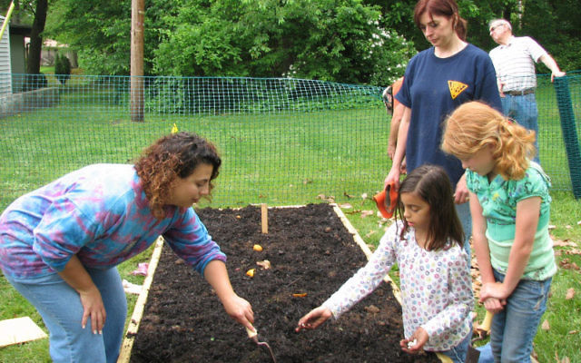 Temple Shalom member Raquel D'Antonio plants vegetables with help from her daughter, Brooke, kneeling, and Hannah Sammut. Looking on is Karin O'Callahan from the Matawan United Methodist Church.