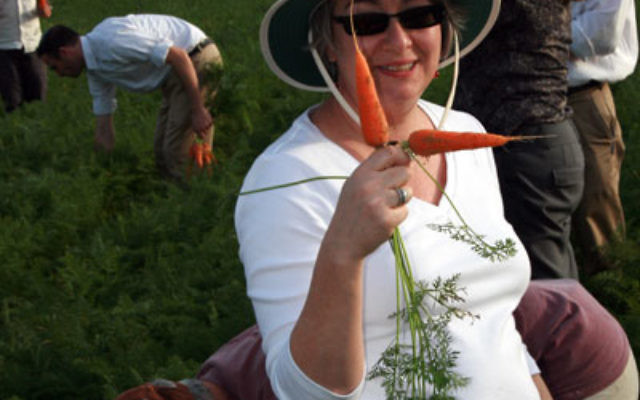On JNF's Makor Mission 2010, Marcy Needle observes a carrot field irrigated with recycled water.