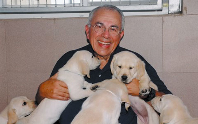Norman Leventhal of Warrington, Pa., founder and president of the Israeli Guide Dog Center for the Blind, plays with puppies at its Beit Oved facility. Photo courtesy the Israeli Guide Dog Center for the Blind