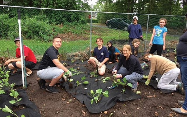 Synagogue members tend the Gan Tikvah Community Garden run by Temple Shalom and Temple Beth Ahm in Aberdeen. The garden at Temple Shalom supplies the food pantry at Matawan United Methodist Church. Photo courtesy Temple Beth Ahm