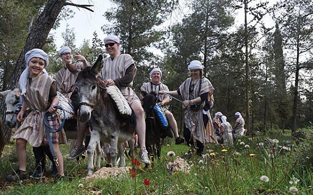 Ancient mode of travel at Kfar Kedem. Photos courtesy of Kfar Kedem