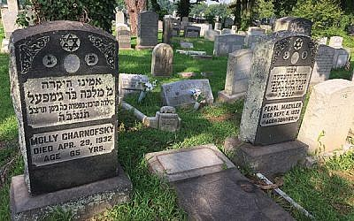 The Greater Trenton Jewish Cemetery Project aims to restore stones like the one toppled over between these two graves. (Photo courtesy Greater Trenton Jewish Cemetery Project)