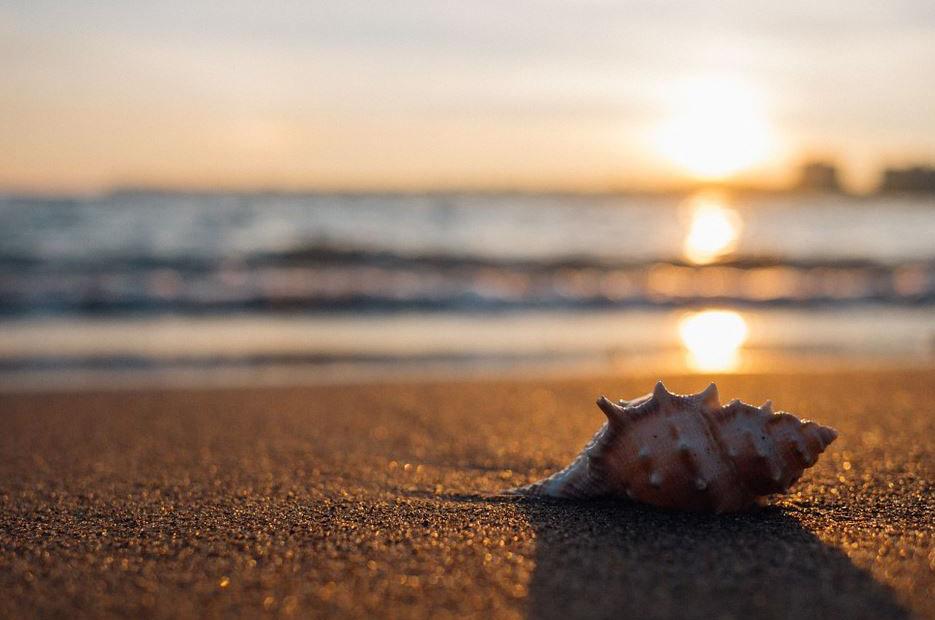 BeachSunset_300X199