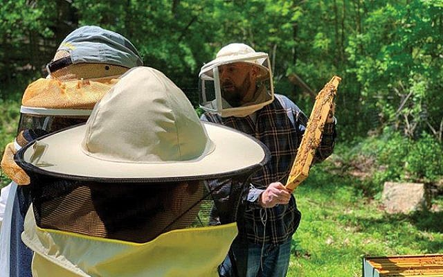 Mike Banker, right, of Eco Bee Supply in Morristown, explains to Boy Scout Troop 15 the management of the beehives he is installing on property belonging to Temple B'nai Abraham in Livingston. Photo Courtesy of Temple B'nai Abraham