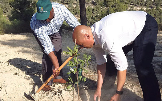Booker, right, and Sen. Tim Scott plant a tree in honor of President John F. Kennedy at Yad Kennedy, near Jerusalem.