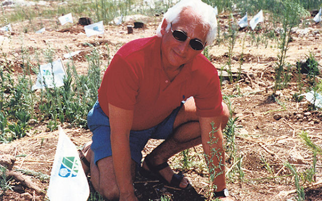 Retiring JNF executive Joel Leibowitz performs the iconic JNF act — planting a tree in Israel.