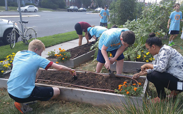 Teens wearing Mitzvah Mania shirts pick, plant, and prune the community garden of Jewish Family Service of Central NJ, a project supported by a grant from Iris Teen Tzedakah.