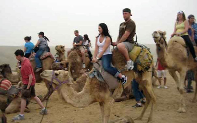 Though he was happy to find sophisticated highways in Israel, Dam and a companion still took the chance to try out a camel.