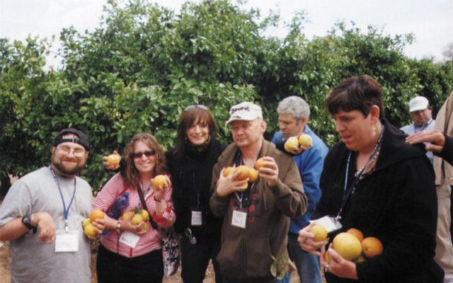 JESPY trip participants — including Mike Jaslow, far left — pick fruit during a tour of a kibbutz with an Israeli peer group. Photos courtesy JESPY House