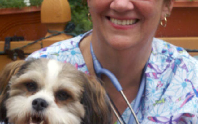 Cookie, the hospice family's four-year-old shih tzu, with Phyllis Hewins, RN, case manager with the Renee Denmark Punia Community Hospice of Greenwood House.