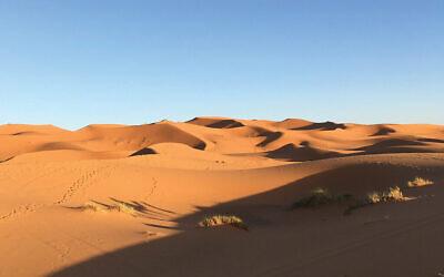The stark beauty of the Sahara Desert. Photos by Lori Silberman Brauner