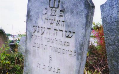 My great-grandmother Surah  Hennah's gravestone in Bardejov.  Photo by Eric Meth