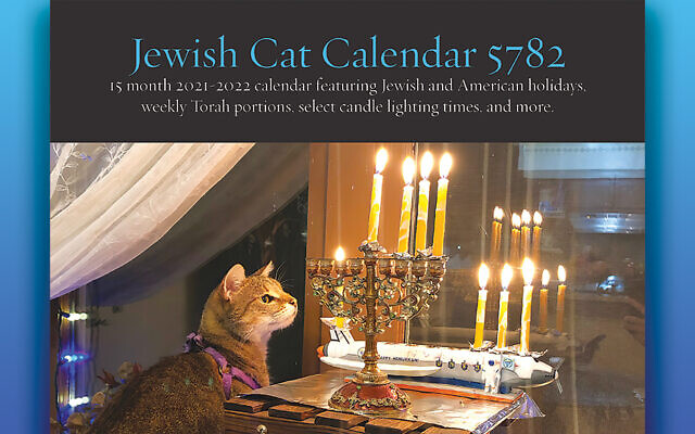Juniper, posing on the cover of this year's Jewish cat calender, also is the November calendar cat. (Analemma McKee-Schwenke)