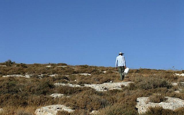 An Israeli settler on a hill near Shilo. (photo credit: Kobi Gideon/Flash90)