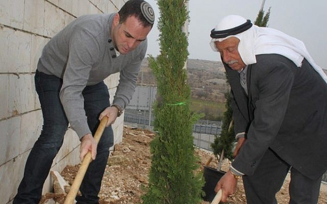 Jews and Arabs plant trees on Tu Bishvat (photo credit: Gershon Elinson / Flash90)