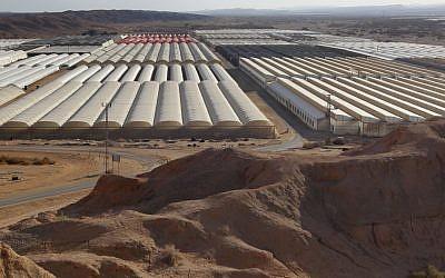 Greenhouses in the Judean desert, near Ein Yahav (photo credit: Nati Shohat/Flash90)