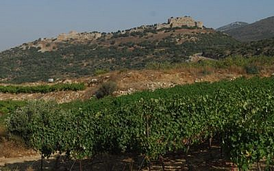 File photo of the Golan Heights (photo credit: Flash90)