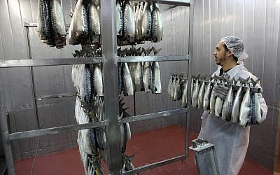 File: Fish being prepared in a Ramle factory (Yaakov Naumi/Flash90)