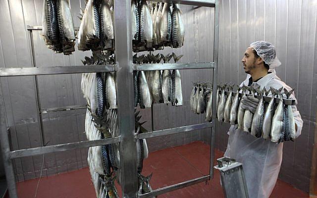 File: Fish being prepared in a Ramle factory (Yaakov Naumi/Flash90)
