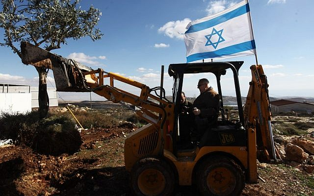 Knesset Speaker Reuven Rivlin plants an olive tree during a visit to the settlement of Migron. (photo credit: Kobi Gideon/Flash90.