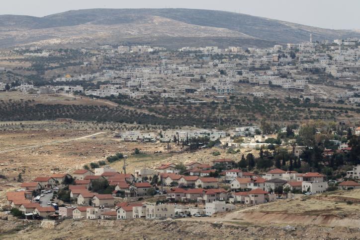 The settlement of Tekoa, south of Jerusalem (Nati Shohat/Flash90)