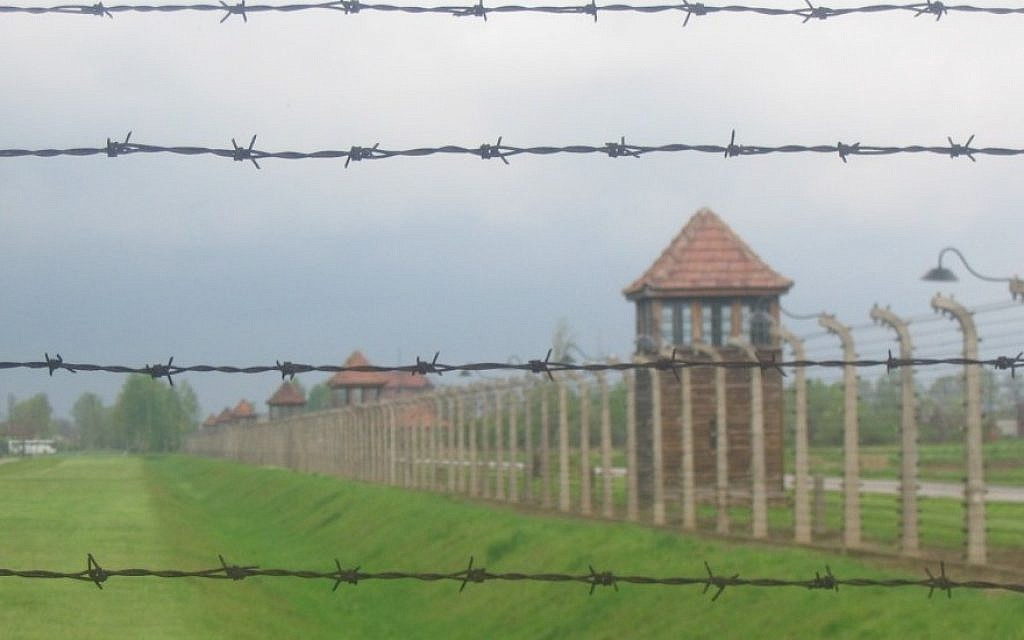 The Auschwitz-Birkenau death camp (Ilan Ben Zion/Times of Israel)