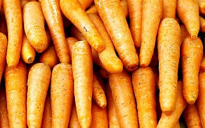 Israel exports 27,000 tonnes of carrots a month to Russia (photo credit: Abir Sultan/Flash 90)