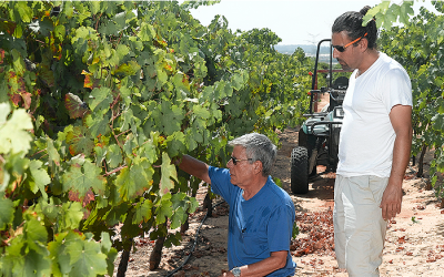 Yair Margalit and his son Asaf in their vineyards (Courtesy Margalit Winery)