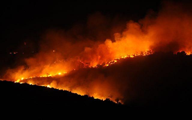 The Carmel fire raging through the forest on December 2, 2010. (Gili Yaari/ Flash90)