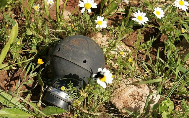 A standard IDF tear gas hand grenade (photo credit: CC-BY-SA Daboos Hassan/Wikipedia)