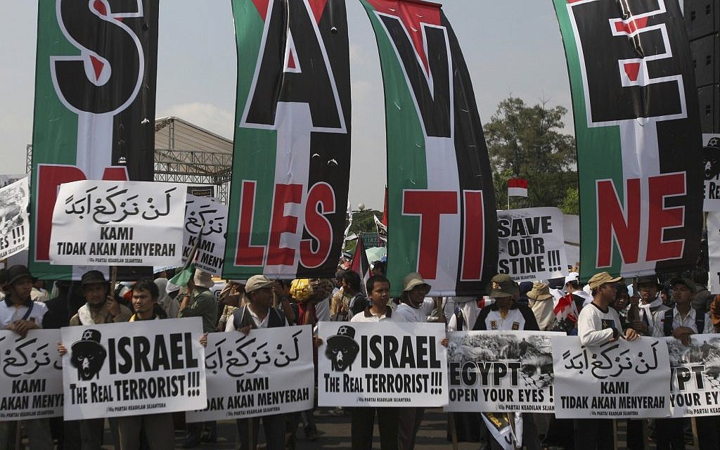 Muslim activists hold pro-Palestinian and anti-Israeli placards at a rally in Jakarta, Indonesia, in June 2010, days after the Mavi Marmara flotilla incident. (photo credit: AP/Achmad Ibrahim)