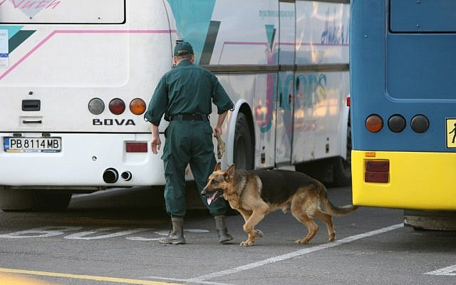 A Bulgarian policeman searching for bombs among buses at the Borgas airport Wednesday. (photo credit: (AP/ Impact Press Group)