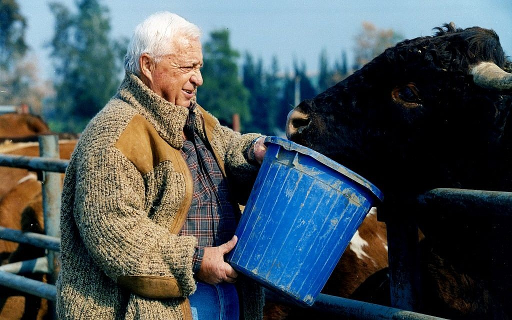 Ariel Sharon working on his Sycamore Farm in the Negev (Photo credit: Moshe Shai/FLASH90)