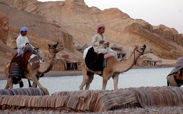 Bedouin in the Sinai desert in 2006. (photo credit: Yossi Zamir/Flash90)