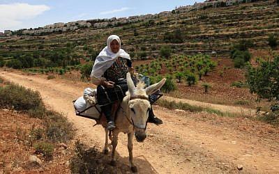 Illustrative photo of a woman riding a donkey. (photo credit: Nati Shohat/Flash90)