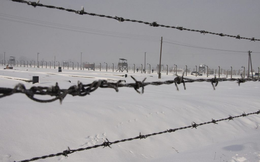 Auschwitz wire in tourists\' suitcase | The Times of Israel