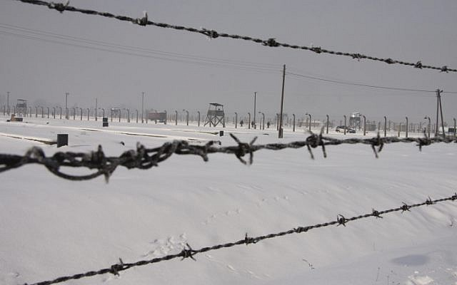 Auschwitz's barbed wire fences (photo credit: Isaac Harari/Flash90)