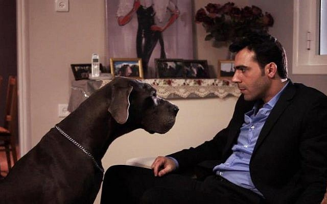 "Scene from David Shadi's short comedy film ""GentleDog"" (photo credit: David Dadi Shadi, Facebook)"