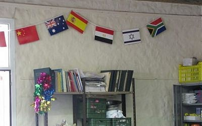 An Israeli flag, among others, in the YMCA camp area (photo credit: Courtesy)