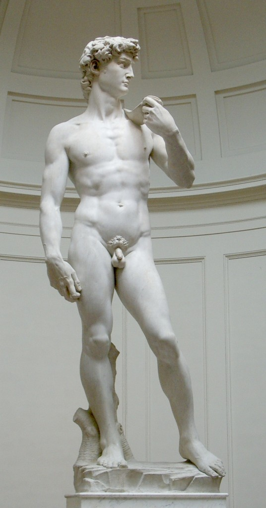 David by Michelangelo (photo credit: CC-BY-SA Rico Heil, Silmaril, Wikimedia Commons)