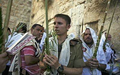 Illustrative: Jewish worshipers hold palm fronds, citron fruits and myrtle and willow branches during Sukkot 2009 (photo credit: Matanya Tausig/Flash90)