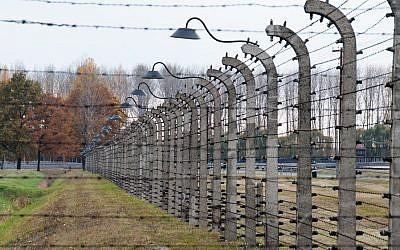 (Auschwitz image via Sutterstock)