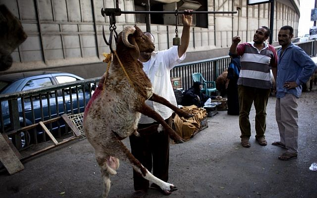 An Egyptian butcher measures the wight of a sheep on a sidewalk Sunday , part of an unseen cluster of sheep that is offered for sale in preparation for Eid al-Adha (Photo credit: Nasser Nasser/ AP)