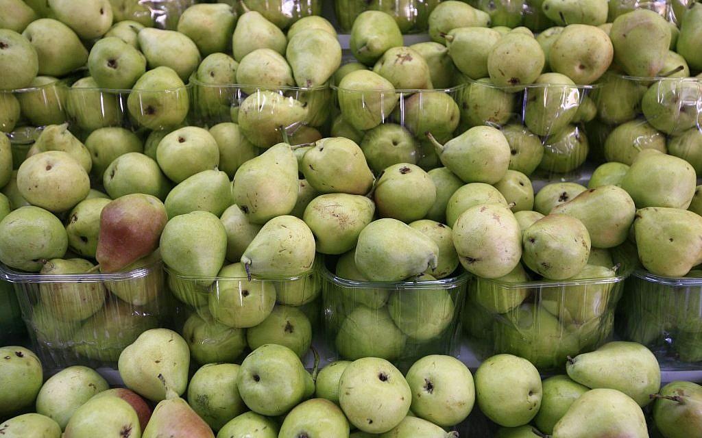 Pears in abundance (photo credit: Nati Shohat/Flash 90)