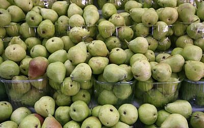 Pears in abundance (photo credit: Nati Shohat/Flash 90)