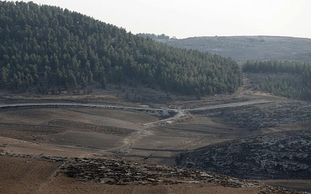 The edge of the Yatir Forest on Saturday morning after the unidentified UAV was shot down by Israeli F-16s (Photo credit: Tsafrir Abayov/ Flash 90)
