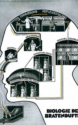 """""""The Biology of a Roast's Smell"""" (1926) depicts how the body takes in and then processes a scent, drawing influences from the scientific and artistic movements of the time. (Photo credit: fritz-kahn.com)"""