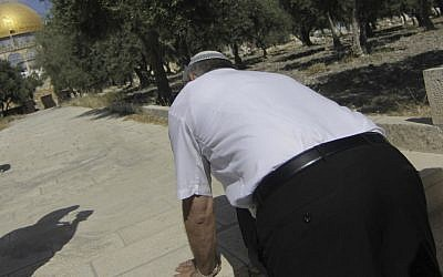 MK Michael Ben Ari (National Union) kneels down to pray as he joined right wing Jews visiting the Temple Mount in Jerusalem's Old City, on May 20 2012 (photo credit: Oren Nahshon/Flash90)