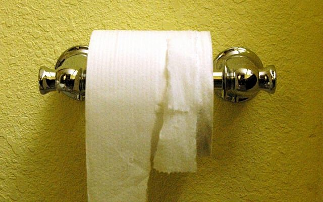 Toilet paper (photo credit: CC BY anyjazz65, Flickr)