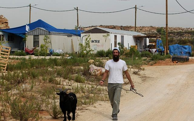 A man walking a goat in the settlement of Tsofim on Wednesday. (photo credit: Nati Shohat/Flash90)